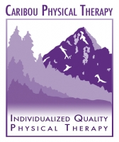 physical therapist sandpoint idaho physical therapist needed for busy